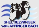 Shelties vom Affinger Bach - Home -