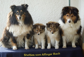 Familienfoto mit Oma Sunny